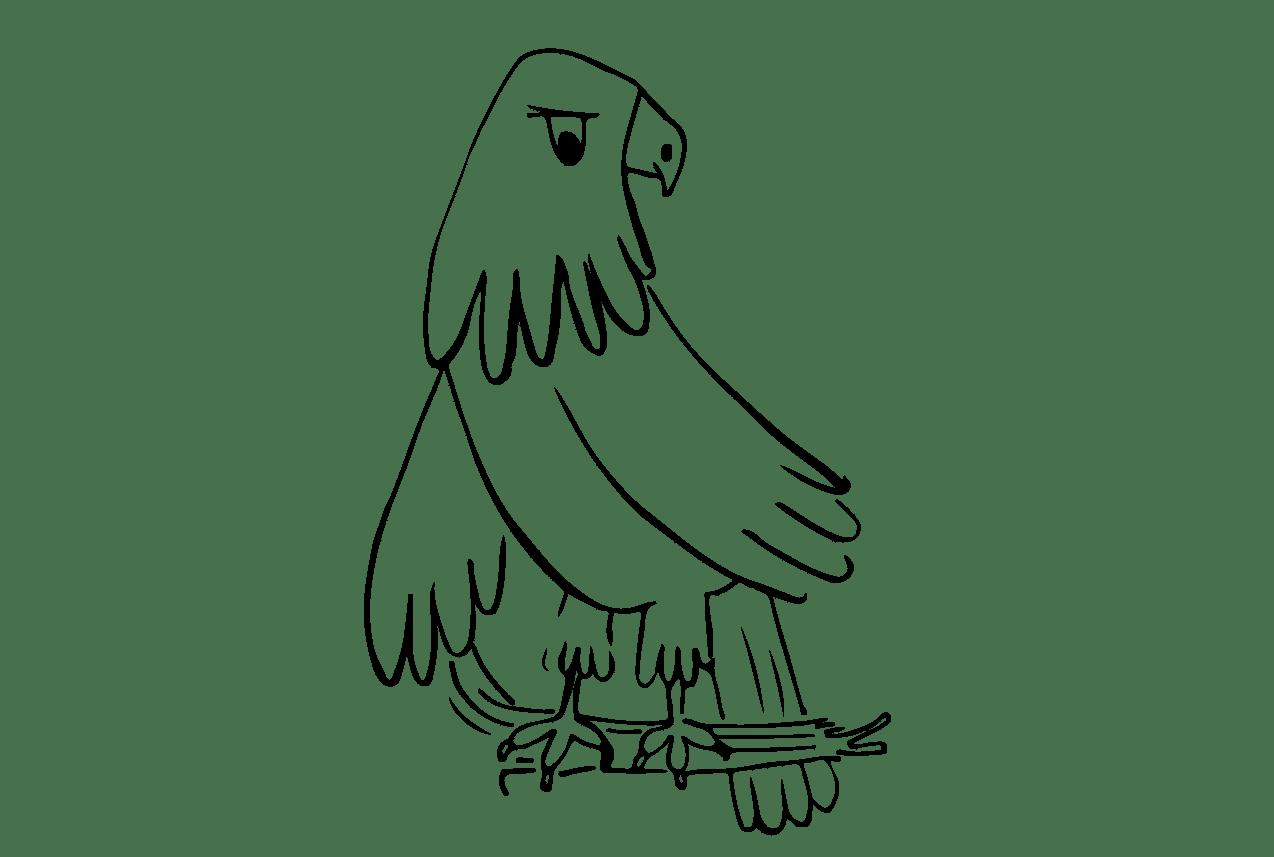 aigle corneille